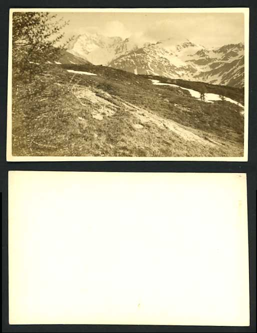 Switzerland Old Photo Postcard SNOWY MOUNTAINS Trees