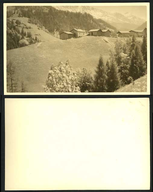 Switzerland Old Photo Postcard HOUSES TREES MOUNTAINS