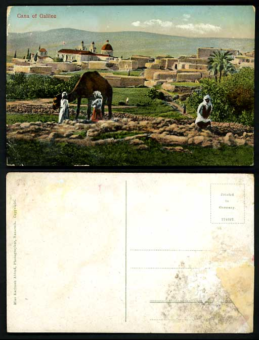 Israel Old Postcard CANA OF GALILEE Camel Mountain Tree