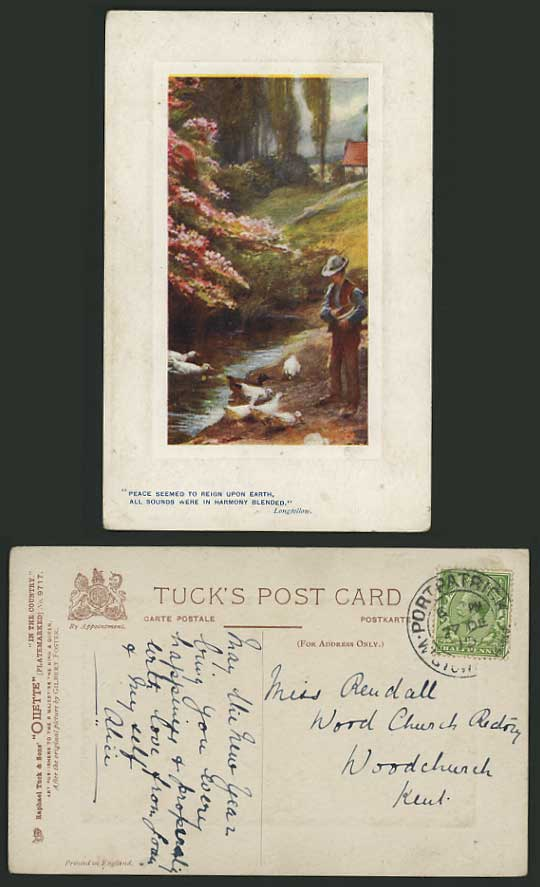 Tuck's OILETTE 1913 Postcard DUCKS & NATURAL LANDSCAPE