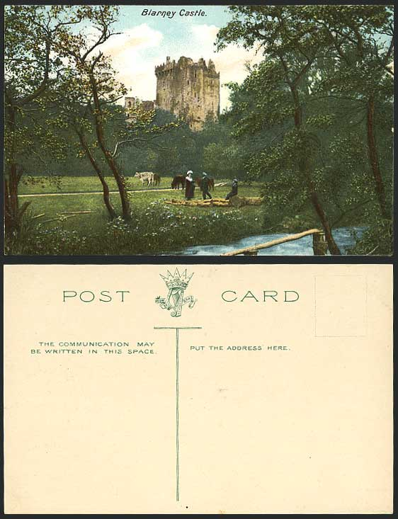 Ireland Cork Old Postcard BLARNEY CASTLE Cattle & River