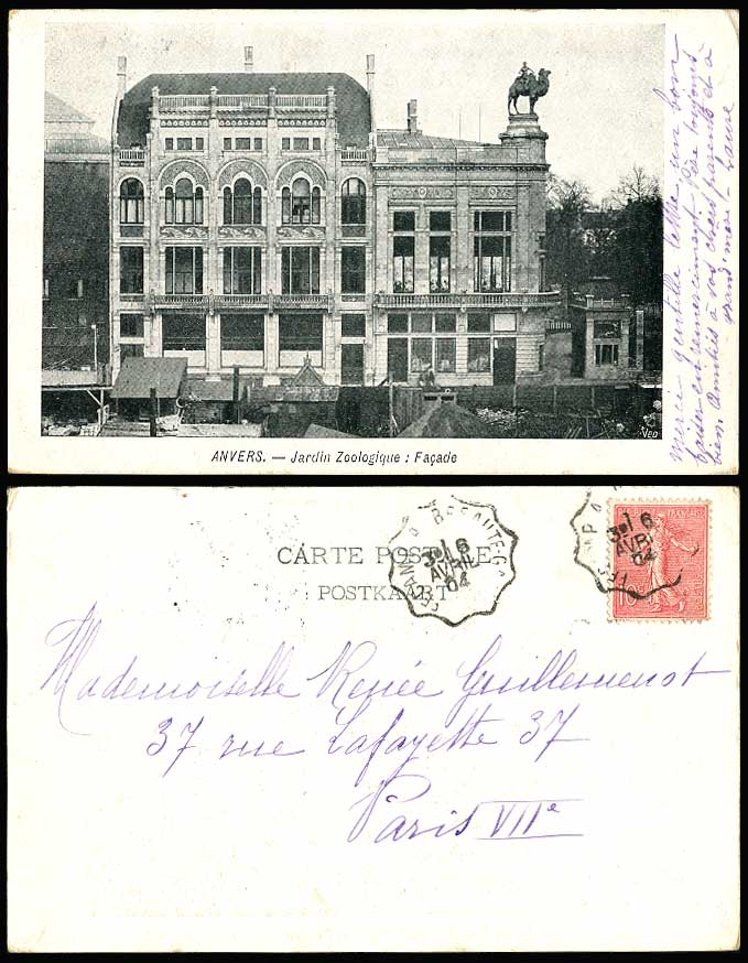 Belgium 1904 Old Postcard Anvers Zoo Jardin Zoologique Facade Front, Camel Rider