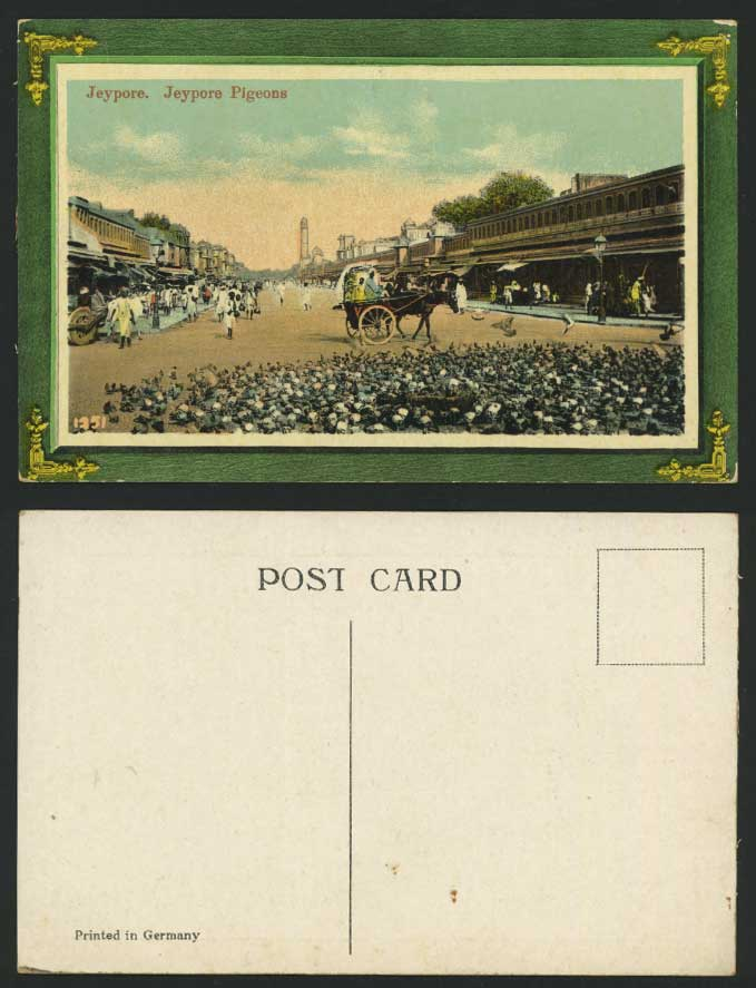 India Old Postcard Jeypore Pigeons Birds & Street Scene
