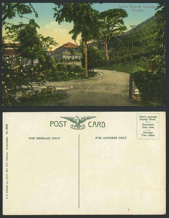 Panama Old Colour Postcard Ancon Hospital Grounds Street Scene Palm Tree Medical
