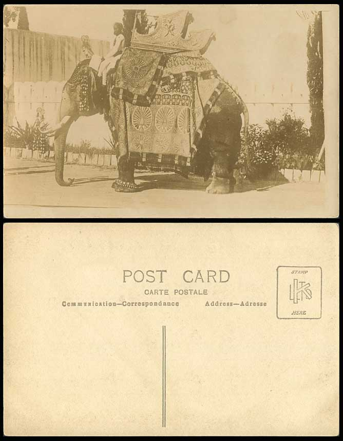 India Decorated STATE ELEPHANT Native Rider Chair on Top Old Real Photo Postcard
