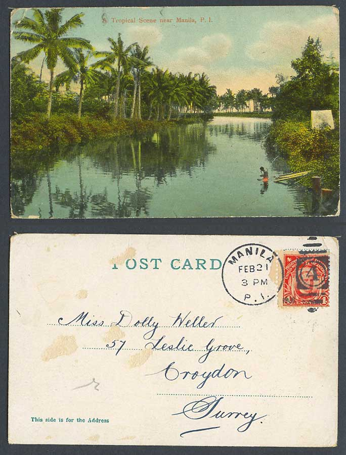 Philippines Old Colour Postcard A Tropical Scene near Manila River Palm Trees PI