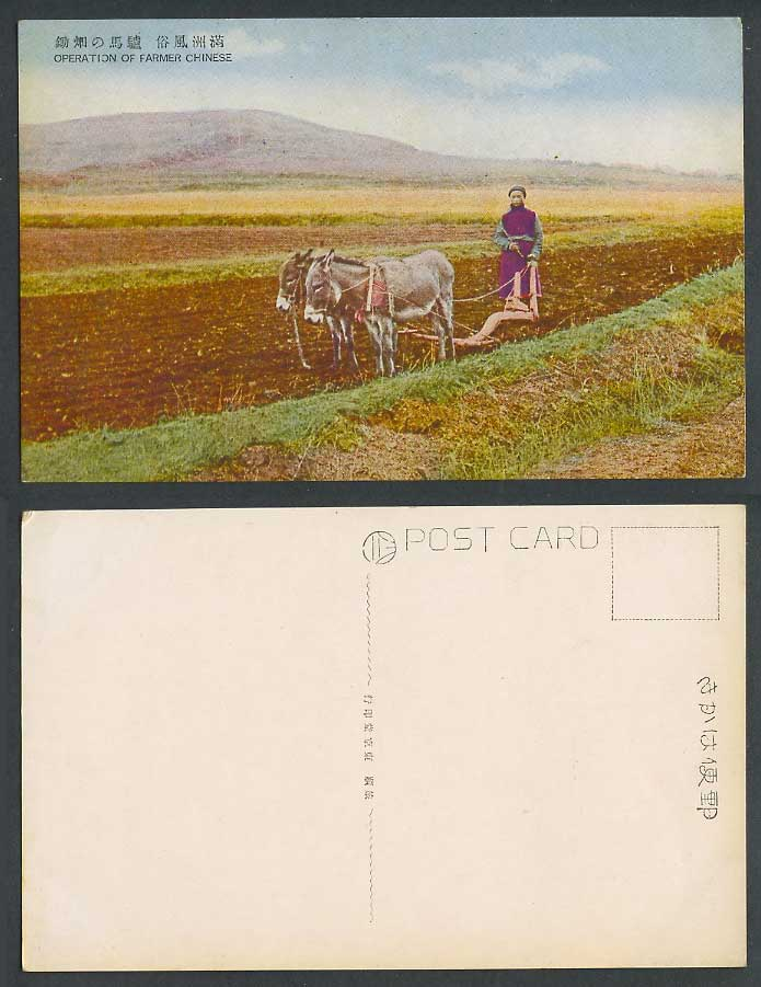 China Old Postcard Donkey Mule Plow Operation of Farmer Chinese Manchuria 驢馬火田鋤
