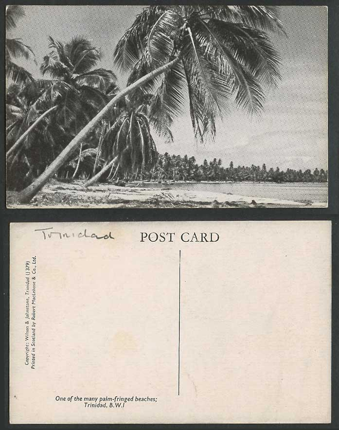 Trinidad Old Postcard One of Many Palm-Fringed Beaches Beach & Palm Trees B.W.I.