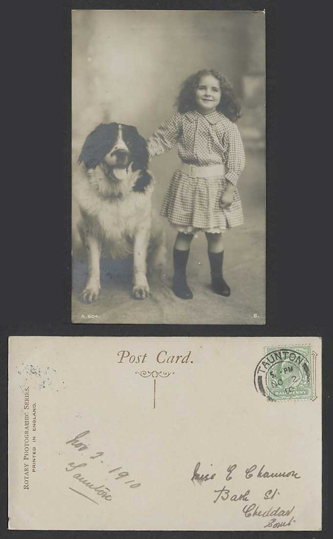 St. Bernard Dog Puppy and a Beautiful Little Girl 1910 Old Real Photo Postcard