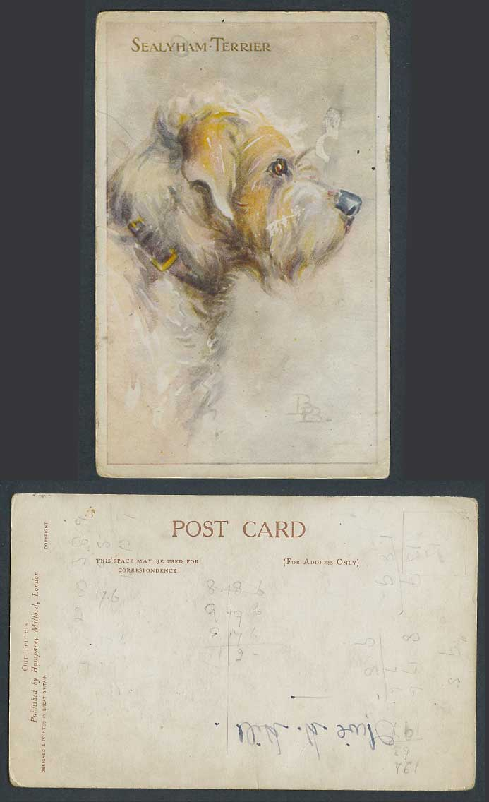 B.B. Artist Signed, Sealyham Terrier Dog Puppy Pet Animal Art Drawn Old Postcard