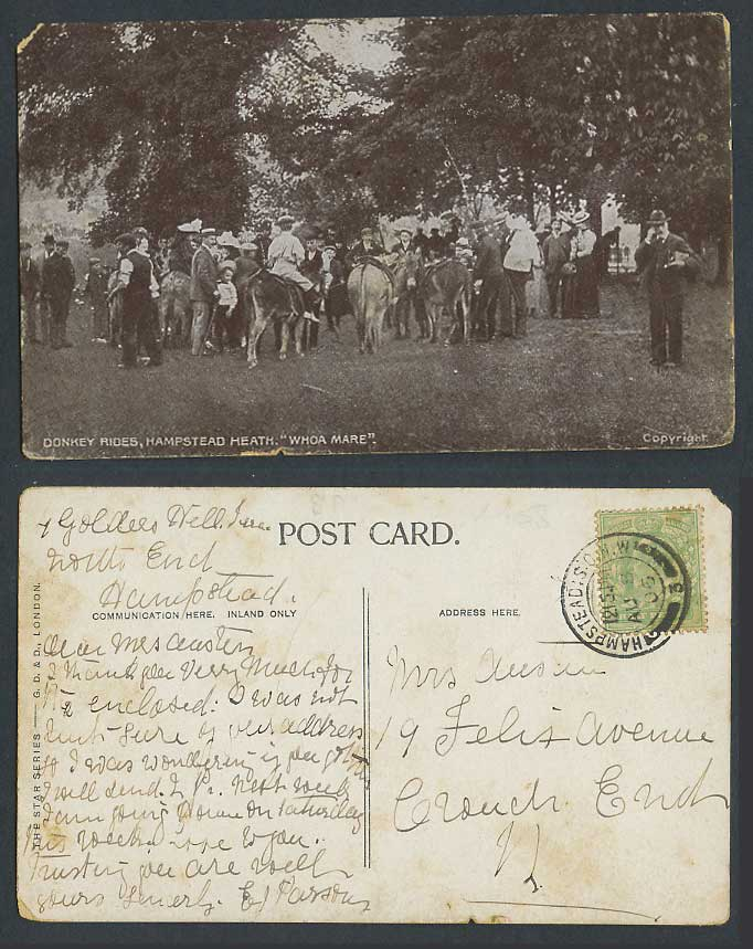 London 1906 Old Postcard Hampstead Heath Whoa Mare Donkey Rides Animals Children