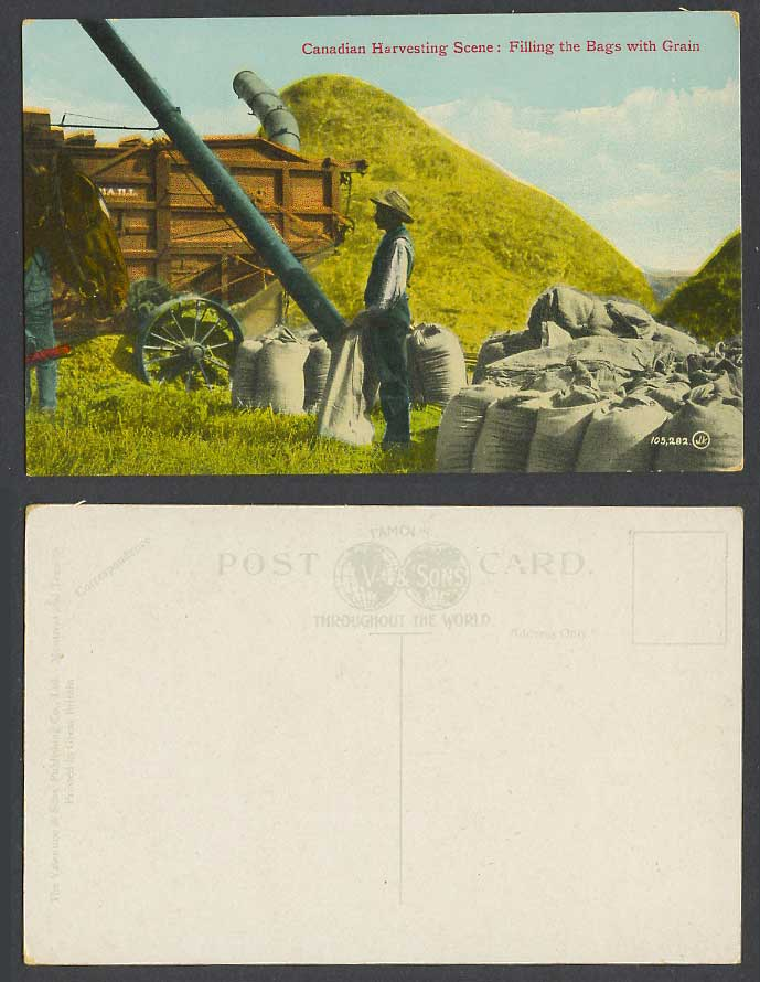 Canada Old Postcard Canadian Harvesting Scene, Filling Bags with Grain, Farmers