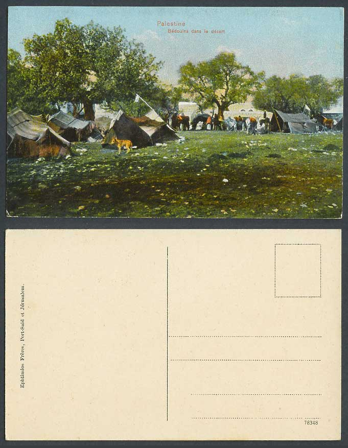 Palestine Old Postcard Beduins Bedouins dans le desert Camp Tents Jerusalem, Dog