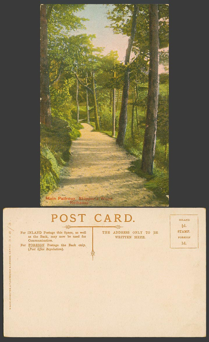 Rothesay Main Pathway Skipper's Wood Forest Trees, Path Road Old Colour Postcard