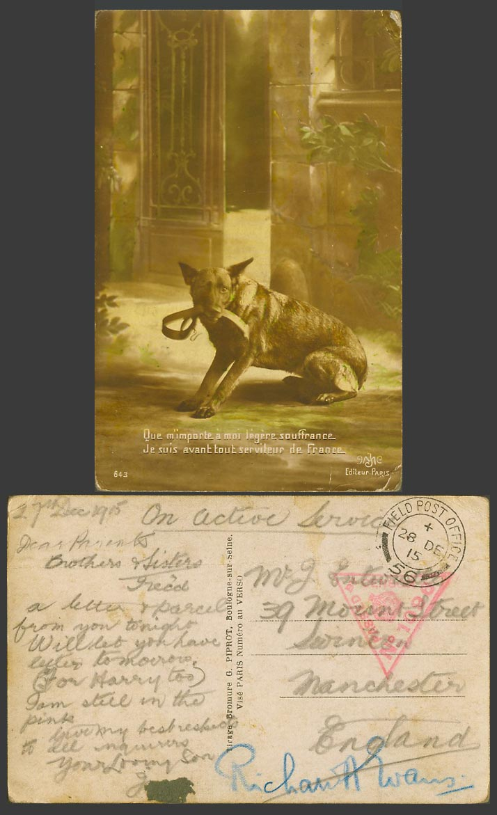 Dog Puppy WW1 On Active Service Censored 1915 Old Postcard French Caption France