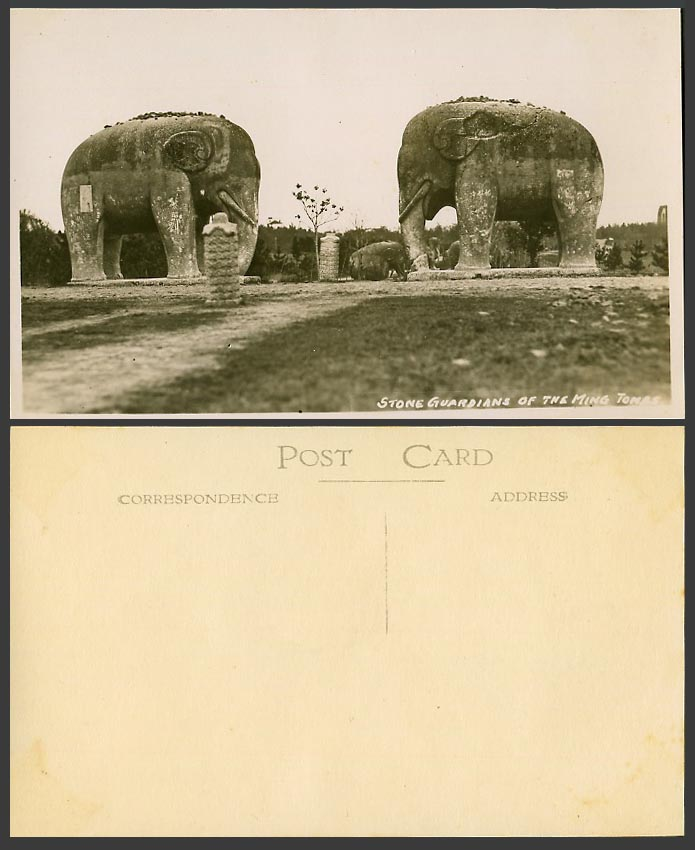 China Old Real Photo Postcard Stone Elephants of The Ming Tomb, Elephant Statues