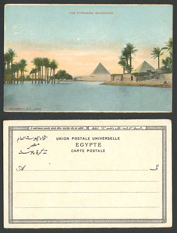 Egypt Old Colour Postcard Pyramids Inundated Palm Trees Flooded Nile River Flood