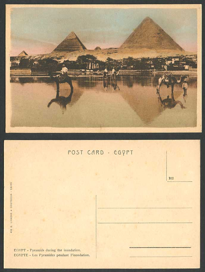 Egypt Old Tinted Postcard Cairo PYRAMIDS GIZA Inundation Flooded Flooding Camels