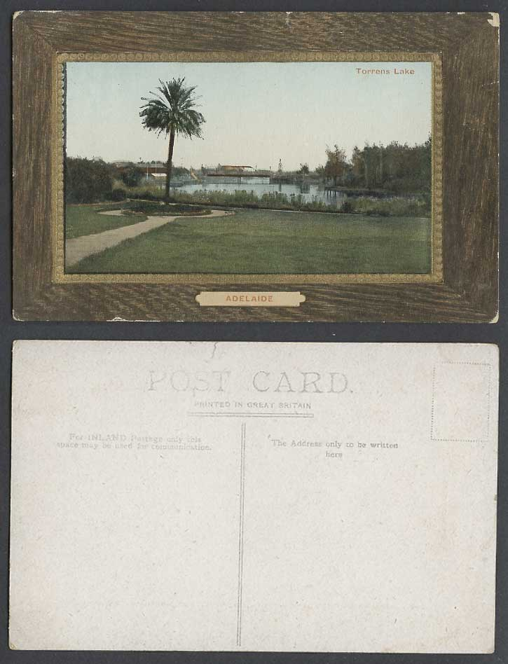 Australia Adelaide Torrens Lake Palm Tree Panorama Australian Old Color Postcard