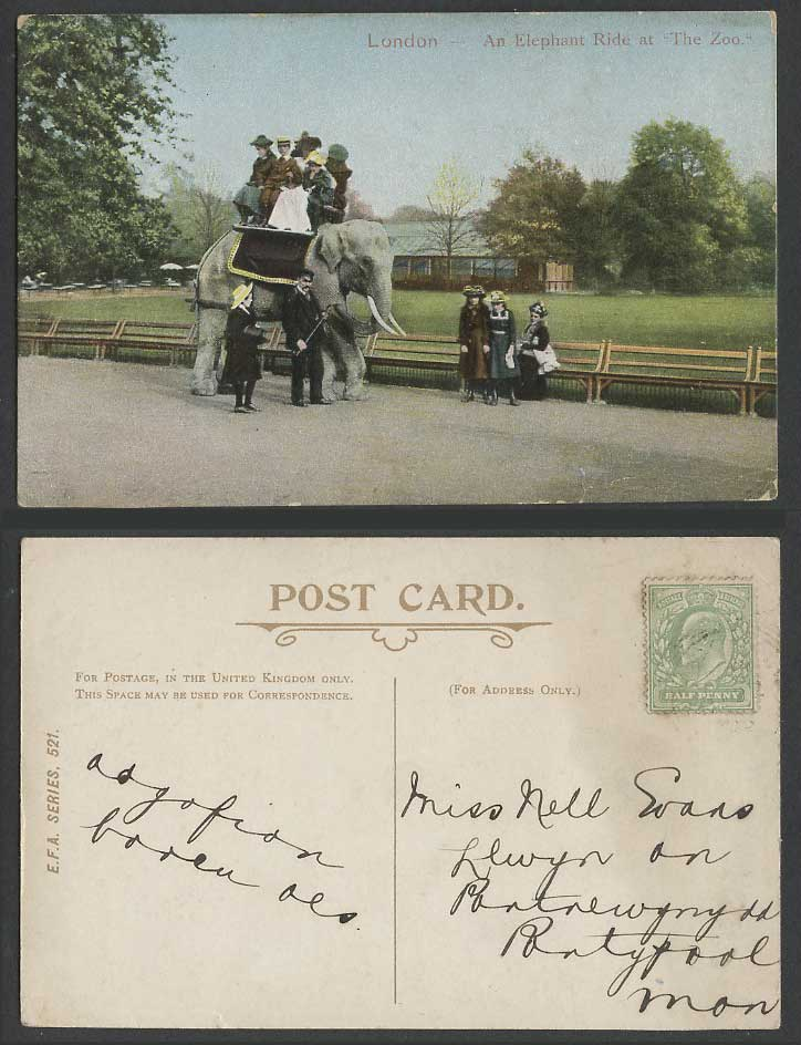 An Elephant Ride at The Zoo Children Zoological Gardens 1908 Old Colour Postcard