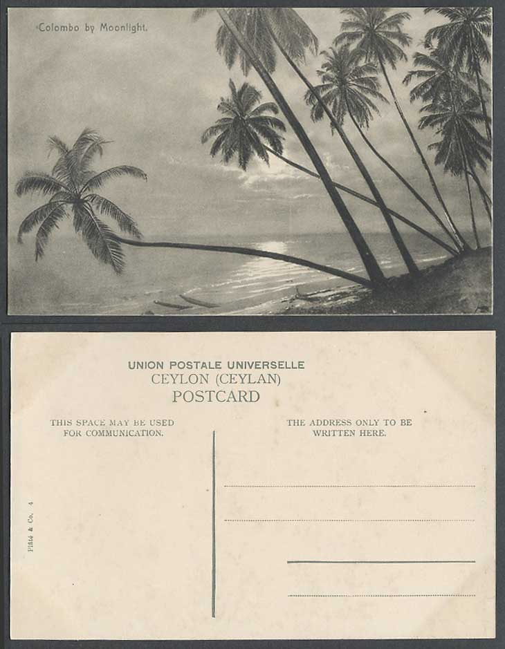 Ceylon Old Postcard Colombo by Moonlight Full Moon Night Palm Trees Panorama N.4