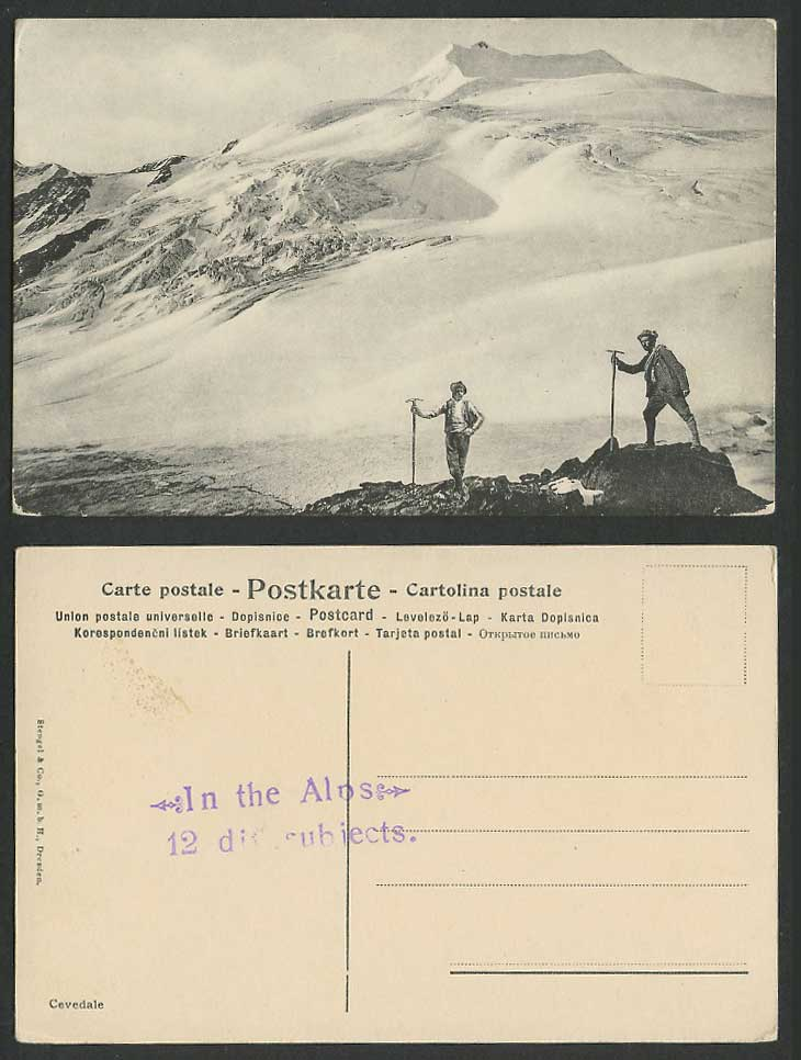 Italy Old Postcard Monte Cevedale, Snowy Mountains, Mountaineers, Mountaineering