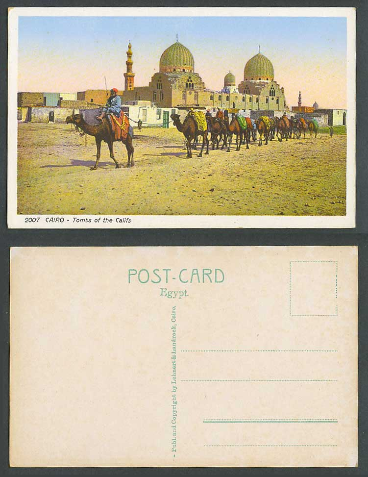 Egypt Old Colour Postcard Cairo Tombs of The Califs Camels Camel Caravan No.2007