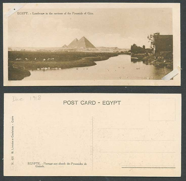Egypt 1918 Old Postcard PYRAMIDS of GIZA Landscape Environs Nile Birds, Bookmark
