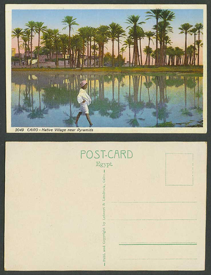 Egypt Old Colour Postcard Cairo Native Village near Pyramids Palm Trees Boy 2049