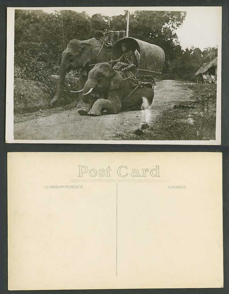 Singapore Old Real Photo Postcard Malay Elephants, Elephant Rider Village Street