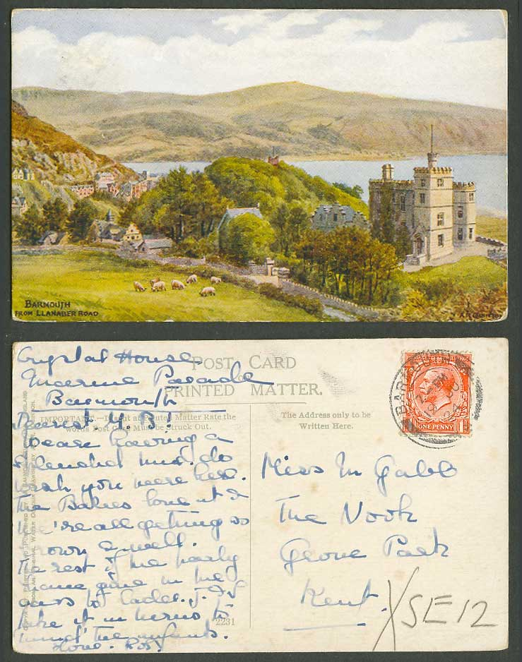 A.R. Quinton 1924 Old Postcard Barmouth from Llanaber Road, SHEEP, Panorama 2231