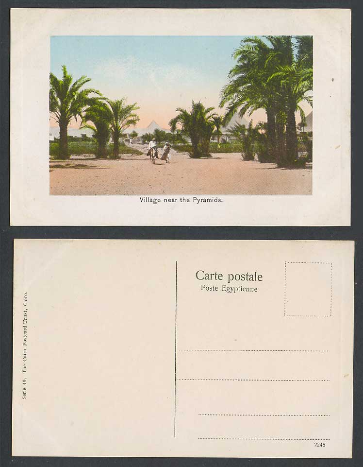 Egypt Old Embossed Postcard Cairo Village near Pyramids, Donkey Rider Palm Trees