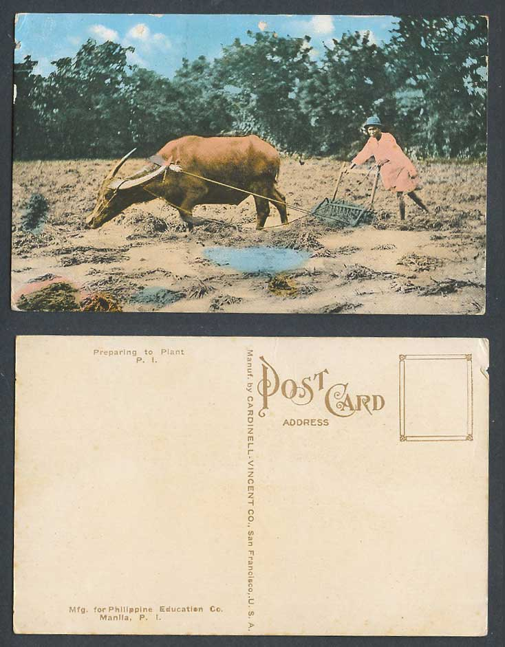 Philippines Old Postcard Water Buffalo Native Farmer, Plough, Preparing to Plant