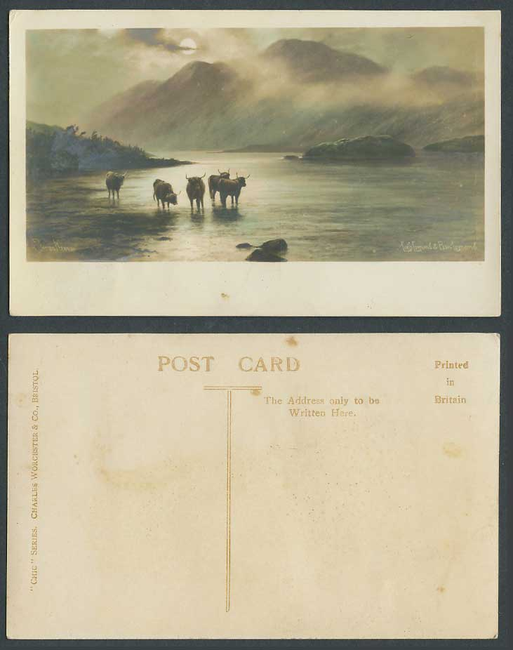 Elmer Keene Loch, Lomond & Ben Lomond Highland Cattle Moonlight Old ART Postcard