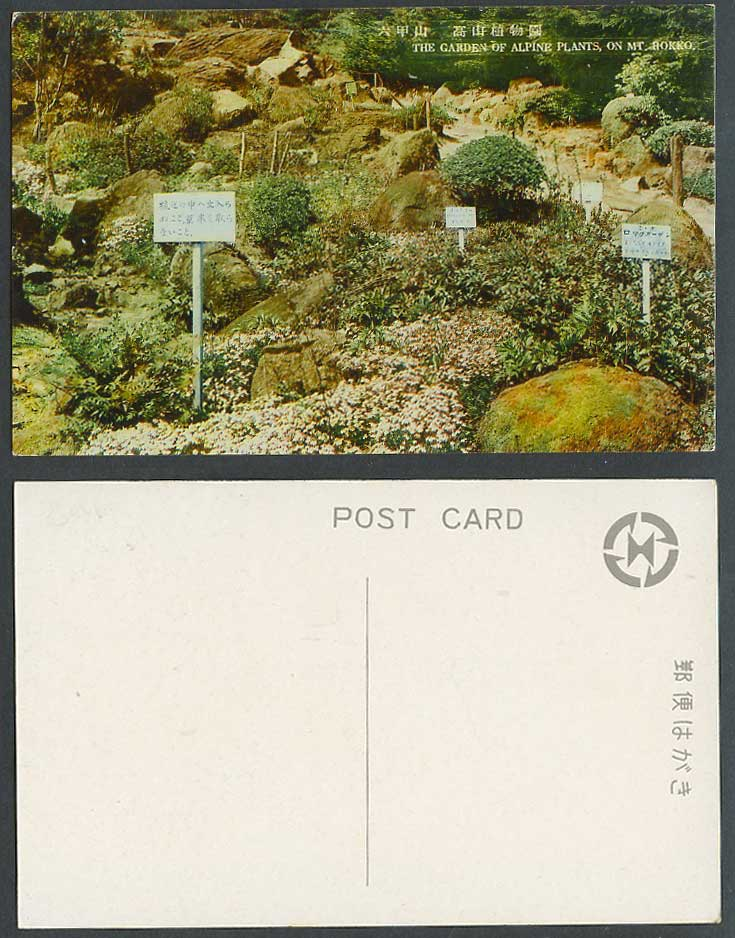 Japan Old Postcard Garden of Alpine Plants, Mt. Rokko, Botanic Gardens 六甲山 高山植物園
