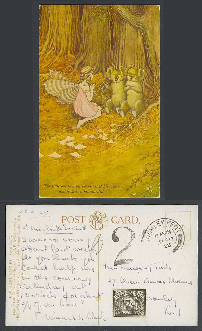 IR&G OUTHWAITE 2d Dues 1908 Old Postcard Fairy Koalas Startled Paws Out of Mouth