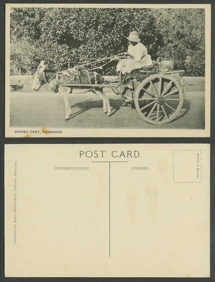 Barbados Old Postcard Donkey Cart Native Driver Bruce Weatherhead Barb. Pharmacy
