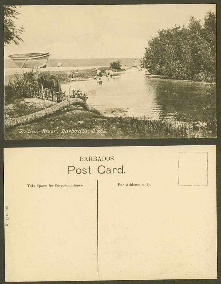 Barbados Old Postcard Indian River Scene, Native Washerwomen, Boat, Horse Animal
