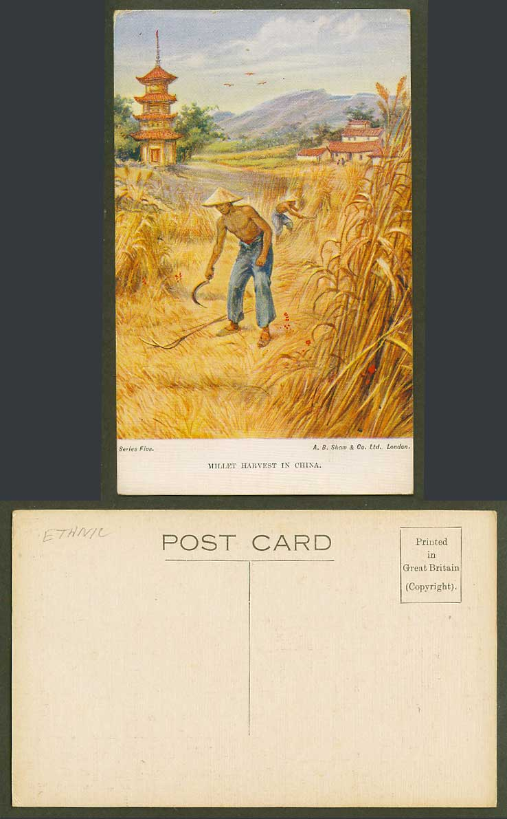 China Old Postcard MILLET HARVEST Pagoda Temple Chinese Farmers at Work Series 5
