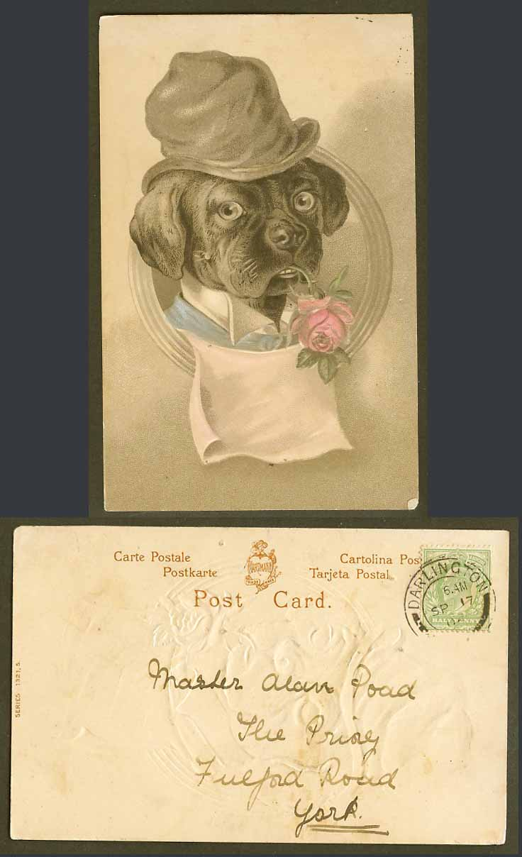 Black Dog Puppy Rose Flower in Mouth Louis Wain Style 1906 Old Embossed Postcard