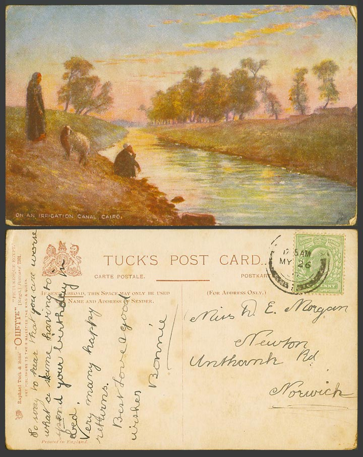 Egypt 1/2d 1907 Old Tuck's Postcard On an Irrigation Canal Cairo, SHEEP Shepherd