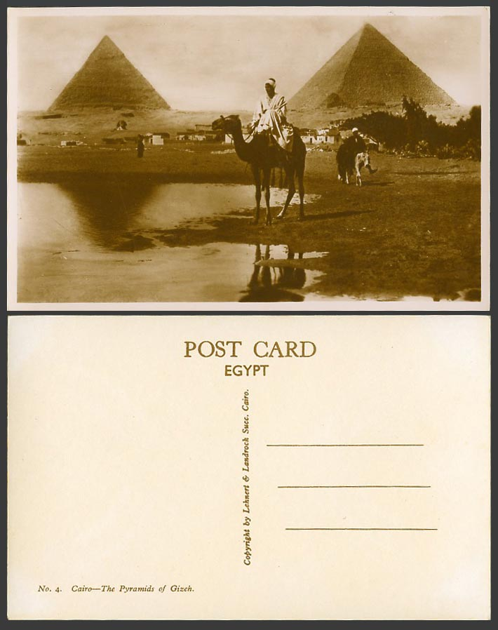 Egypt Old Real Photo Postcard Cairo Pyramids of Gizeh Giza Camel Rider Donkey N4