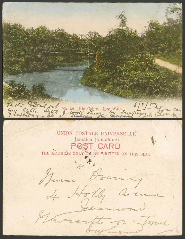 Jamaica 1909 Old Colour UB Postcard Rio Cohre Bog Walk Bridge River Scene B.W.I.