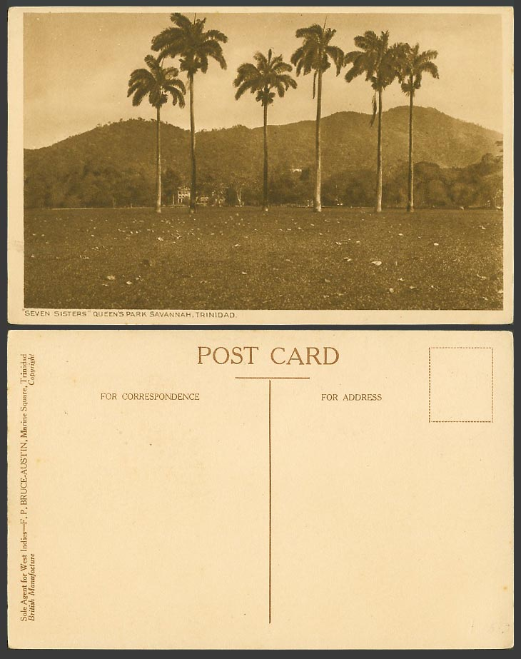 Trinidad Old Postcard Seven Sister Queen's Park Savannah Port-of-Spain Palm Tree